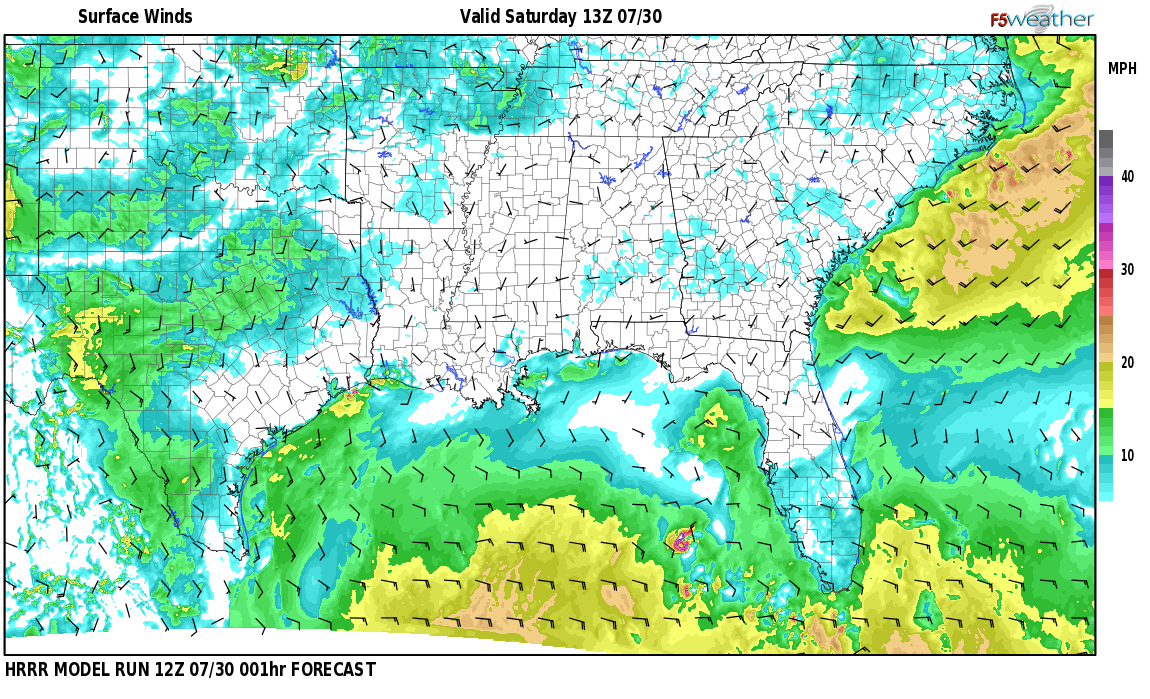 Surface wind speed map over Borden Wheeler Springs, AL